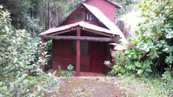 Se venden 2 bellas casas tipo cabaña en el cañon del guarco, cartago.